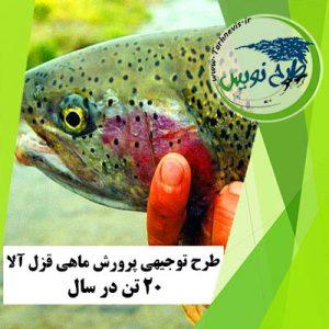 طرح توجیهی پرورش ماهی قزل آلا 20 تن