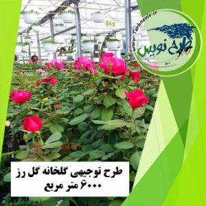 طرح توجیهی گلخانه گل رز 6000 مترمربع