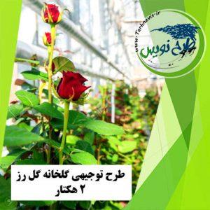 طرح توجیهی گلخانه گل رز 2 هکتار