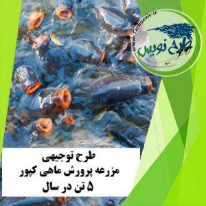 طرح توجیهی پرورش ماهی کپور 5 تن در سال
