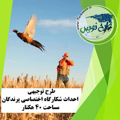 طرح توجیهی احداث شکارگاه اختصاصی پرندگان مساحت 40 هکتار