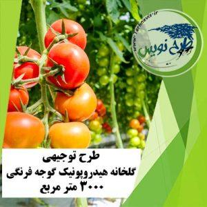 طرح توجیهی گلخانه گوجه فرنگی 3000 مترمربع