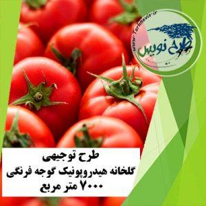 طرح توجیهی گلخانه گوجه فرنگی 7000 مترمربع