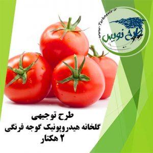 طرح توجیهی گلخانه گوجه فرنگی 2 هکتار