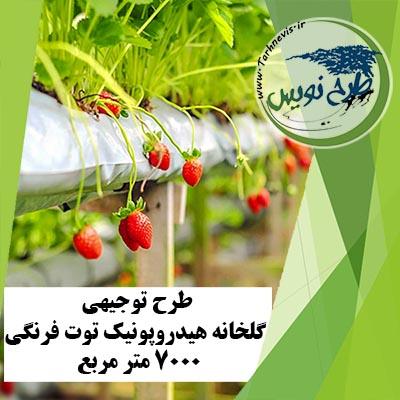 طرح توجیهی گلخانه هیدروپونیک توت فرنگی 7000 مترمربع