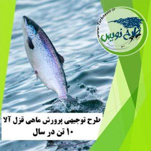 طرح توجیهی پرورش ماهی قزل آلا 10 تن