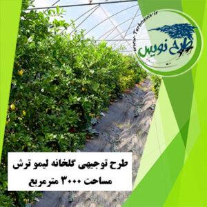 طرح توجیهی گلخانه لیمو ترش 3000 مترمربع