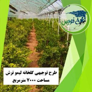طرح توجیهی گلخانه لیمو ترش 7000 مترمربع