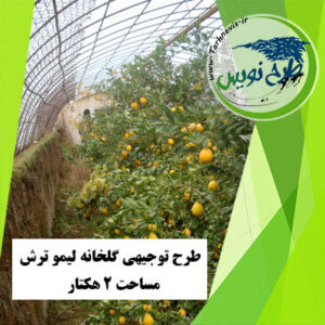 طرح توجیهی گلخانه لیمو ترش 2 هکتار
